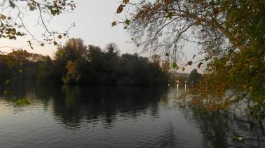parque (2)