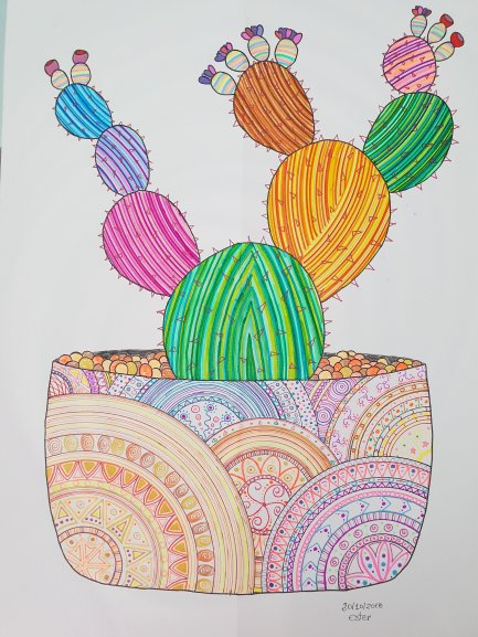 Dibujo Cactus Zentangle Pasiones De Una Chica