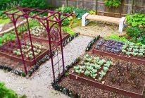 ideas-jardines-grandes