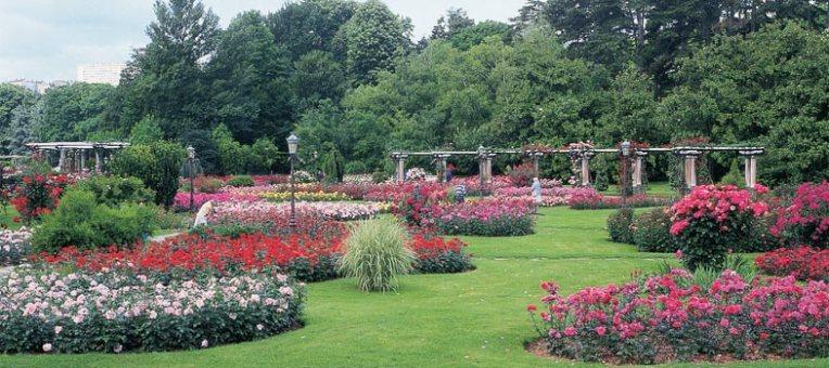 Parc_de_la_tete_d_or-grande_roseraie